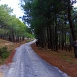 La Jarosa, Guadarrama