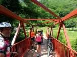 Buscando sombra en la zona del parque natural de Izki